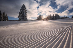 Groomed skiing slope in Black Forest, Germany Stock Images