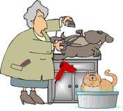 groomer κατοικίδιο ζώο διανυσματική απεικόνιση