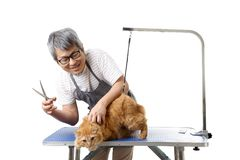 Groomer. The Asian pet groomer standing on the white background Stock Photo