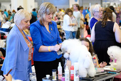 Groomer prepares dog to the show Stock Photo