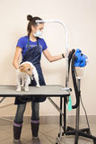 The groomer uses a hair dryer to dry dog. Royalty Free Stock Image