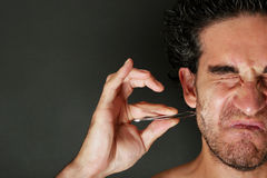 Grooming Royalty Free Stock Images
