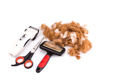 Grooming accessories of clipper, scissor, comb, brush with poodle Stock Photos