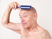 Daily Grooming Bald Man Brushing Scalp Stock Photography