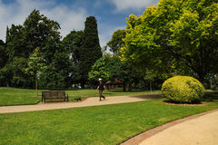 Grooming and beauty of the parks. Of Melbourne royalty free stock image