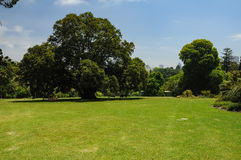 Grooming and beauty of the parks. Of Melbourne Royalty Free Stock Images