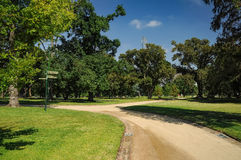 Grooming and beauty of the parks. Of Melbourne Royalty Free Stock Photo
