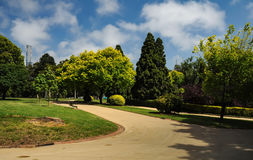 Grooming and beauty of the parks. Of Melbourne Royalty Free Stock Photos