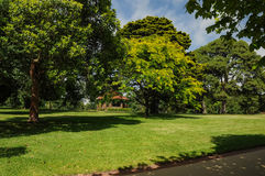 Grooming and beauty of the parks. Of Melbourne Royalty Free Stock Photography