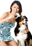 Grooming Dog Stock Photo