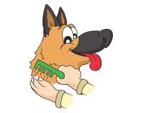 Grooming dog  illustration Stock Photo