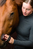 Grooming horse Stock Photos