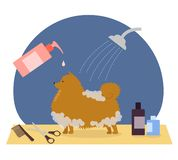 Grooming, pet care, dog care, hair care stock illustration