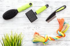 Grooming tools for training pet and brushes on light wooden background top view Royalty Free Stock Images