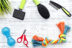 Grooming tools for training pet and brushes on light wooden background top view mock-up Stock Images