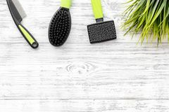 Grooming tools for training pet and brushes on light wooden background top view mock-up Royalty Free Stock Photography