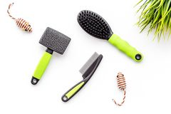 Grooming tools for training pet and brushes on white background top view Stock Images