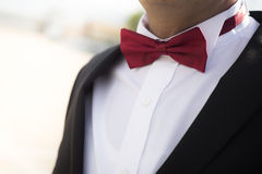 Grooms bow tie Stock Images
