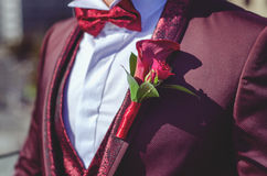 Grooms buttonhole. Beautiful grooms marsala buttonhole looks perfect Royalty Free Stock Images