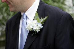 Grooms Corsage. Groom's corsage, blue tie stock photography