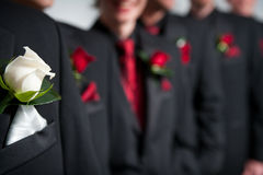 Grooms corsage in foreground, groomsmen behind stock image