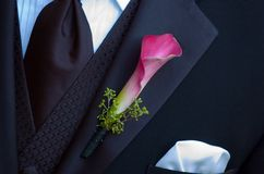Grooms flower. Calla lilly on groom tux Royalty Free Stock Photography