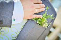 Grooms hand Stock Images