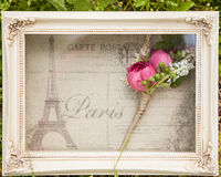 Grooms pink boutonniere in box with a Paris cloth background royalty free stock image