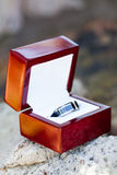 The grooms ring Stock Photography