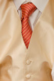 Grooms tie detail Royalty Free Stock Photos