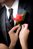 Grooms wedding flower Stock Images