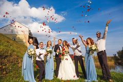 Groomsmen and bridesmaids Royalty Free Stock Photography