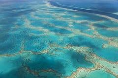 Groot Barrièrerif stock afbeeldingen
