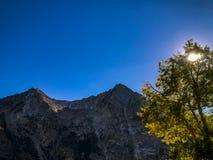 Groot berg en Aspen Trees Covering het Zonlicht stock foto