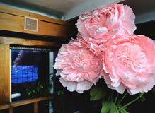 Groot bloemenlandschap op 8 Maart, de Dag van Internationale Vrouwen Onwerkelijke bloemen, modellen, pioenen stock afbeeldingen