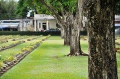 groot bomen en gazon in een begraafplaats met grafstenen op de achtergrond Royalty-vrije Stock Afbeeldingen
