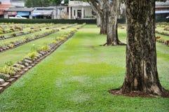 groot bomen en gazon in een begraafplaats met grafstenen op de achtergrond Stock Afbeeldingen