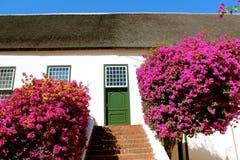 Groot constantia wine estate Royalty Free Stock Photos