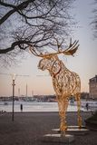 Groot die Amerikaanse elandenbeeldhouwwerk van geleide lichten wordt gemaakt in Nybrokajen tijdens Kerstmisseizoen Stock Foto