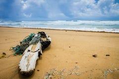 Groot die drijfhout met kabels op Kuaui-strand met bewolkte hemel en roiling oceaan op achtergrond wordt verward stock foto's
