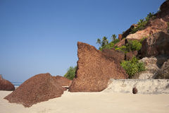 Groot een shell rots op het strand. Stock Fotografie