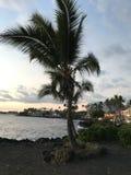 Groot Eiland Hawaï stock foto's