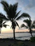 Groot Eiland Hawaï stock fotografie