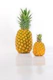 Groot en Kleine ananas Royalty-vrije Stock Afbeeldingen