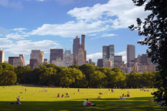 Groot Gazon van Central Park Stock Fotografie