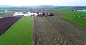 Groot groen gebied, die over het gebied, het groeien installaties, landbouw, Groot groen gebied op de achtergrond van klein vlieg stock footage