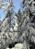 Groot huis in het sneeuwhout Stock Fotografie