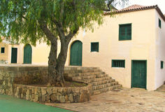 Groot huis met boom en groene deuren Stock Foto