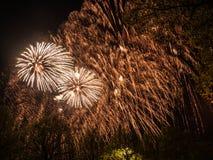 Groot kleurrijk vuurwerk Royalty-vrije Stock Foto