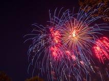 Groot kleurrijk vuurwerk Royalty-vrije Stock Afbeeldingen